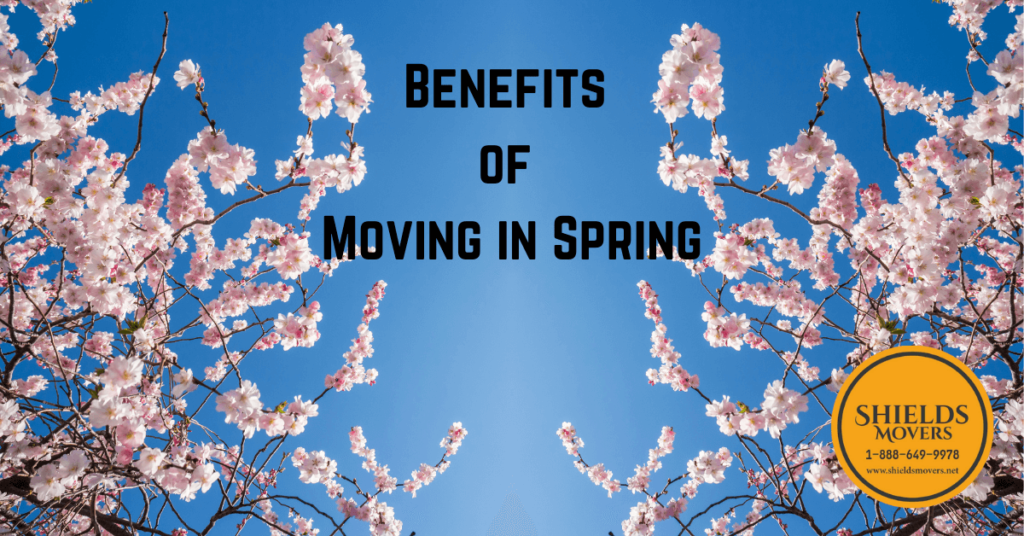 benefits of moving in spring